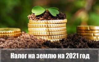 Земельный налог 2021 года для физических лиц: ставка, сроки