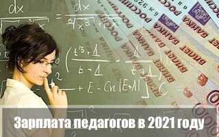Зарплата педагогов в 2021 году