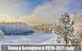 Какой будет зима 2020-2021 в Беларуси