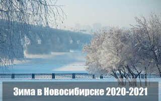Какой будет зима 2020-2021 в Новосибирске