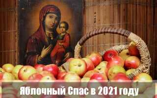 Яблочный Спас 2021 года – Преображение Господне