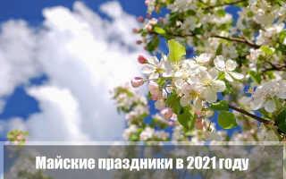 Праздники в мае 2021 года в России