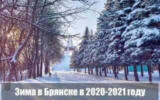 Какой будет зима 2020-2021 в Брянске