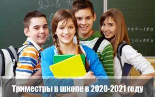Триместры в школе 2020-2021: школьные каникулы