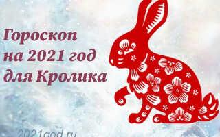 Гороскоп на 2021 год для Кролика (Кота)