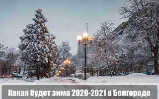Какой будет зима 2020-2021 в Белгороде