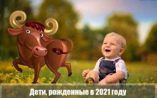 Какими будут дети, рожденные в 2021 году Быка