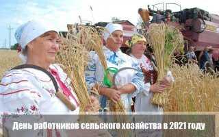 День работников сельского хозяйства в 2021 году