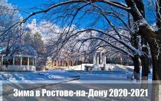 Какой будет зима 2020-2021 в Ростове-на-Дону