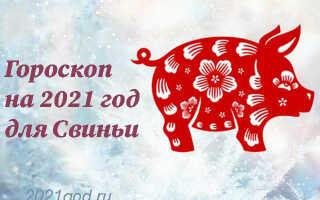 Гороскоп на 2021 год для Свиньи (Кабана)