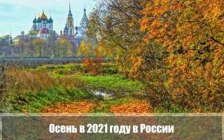 Какой будет осень 2021 года в России