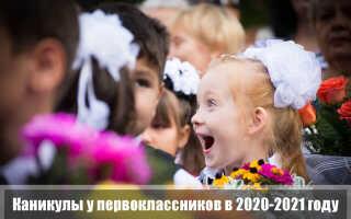 Каникулы у первоклассников в 2020-2021 году