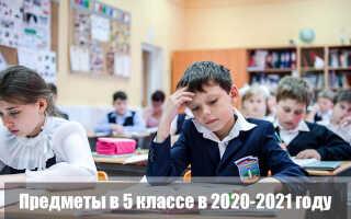 Предметы в 5 классе в 2020-2021 году