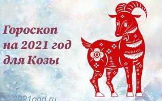 Гороскоп на 2021 год для Козы (Овцы)