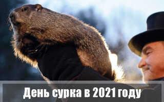 День сурка в 2021 году
