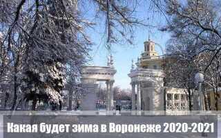 Какой будет зима 2020-2021 года в Воронеже