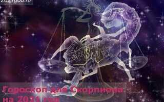 Гороскоп для Скорпиона на 2021 год