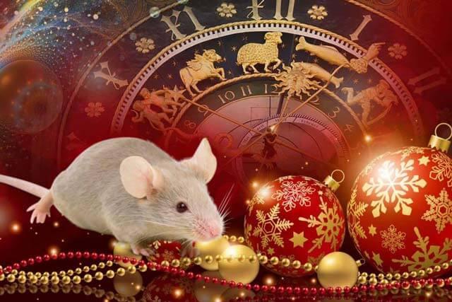 Гороскоп на 2021 год для Крысы3